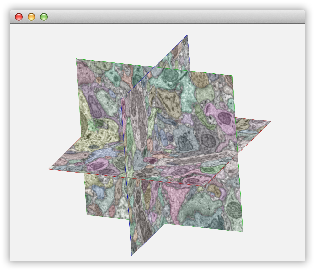 KNOSSOS 3D Visualization Example